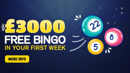 Time to make your favourite past time productive with Online Bingo Games